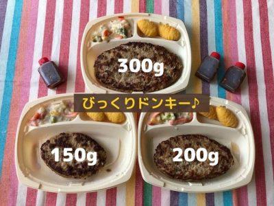 ハンバーグの大きさ3種類